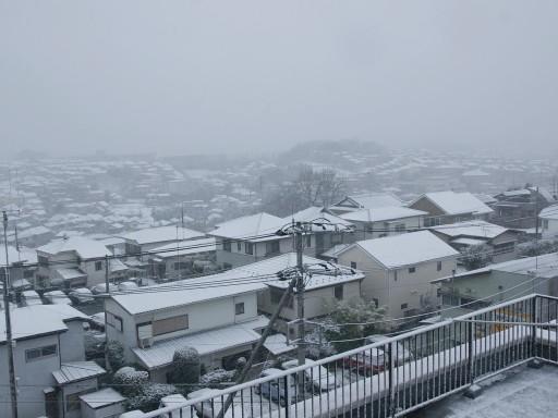 Yukimoyou_02181
