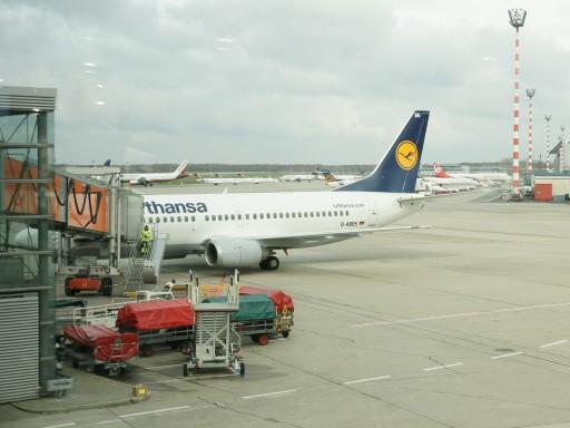 German003