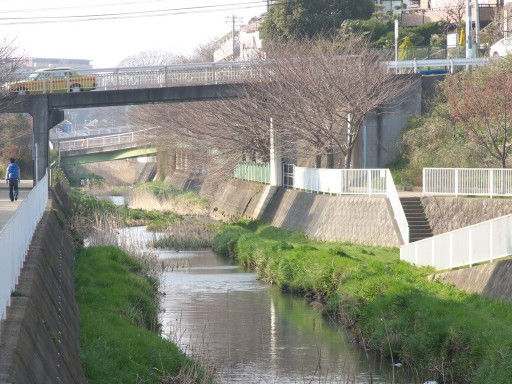 Hiratonagayagawa_1108091_2