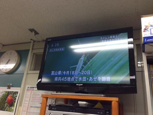 Photo_1407031