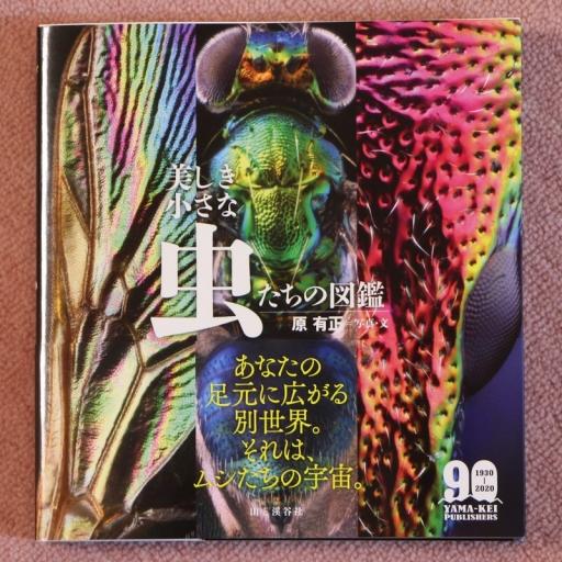 Book20200911